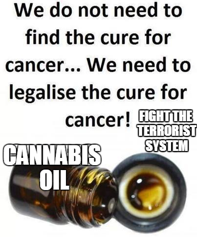 cannabis oil 1