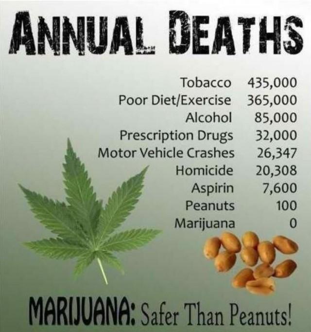 Marijuana safe